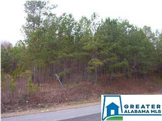 LOGAN MARTIN DAM RD 0, Cropwell, AL 35054 - Photo 1