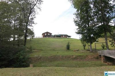 1689 COUNTY ROAD 864, WADLEY, AL 36276 - Photo 2