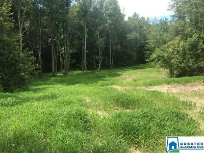 551 SARDIS RD 19.1 ACRES, Cragford, AL 36255 - Photo 1