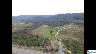 5600 SHOAL CREEK RD 5600, Ashville, AL 35953 - Photo 1
