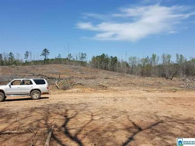 0 HWY 63, Goodwater, AL 35072 - Photo 2