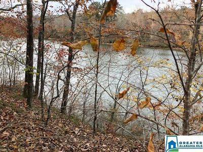 0 UNDERWOOD FERRY RD 2+ ACRES, Quinton, AL 35130 - Photo 2