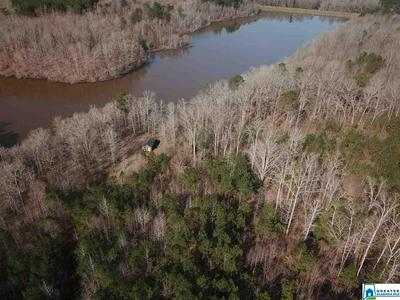 0 CO RD 238 # N/A, ROANOKE, AL 36274 - Photo 1