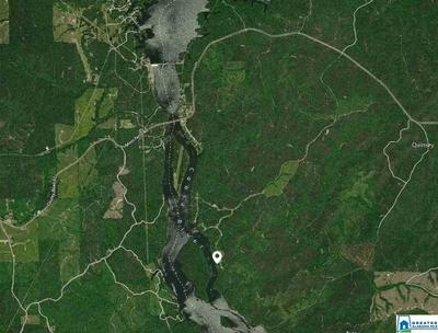 LOT-36 WATERS WAY # LOT-36 - LAKE LOT, CLANTON, AL 35046 - Photo 1
