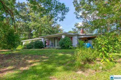 63756 US HIGHWAY 231, CLEVELAND, AL 35049 - Photo 2