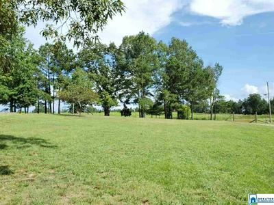 1620 COUNTY ROAD 25 # 1, BREMEN, AL 35033 - Photo 2