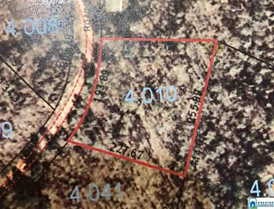 LOT 77 SOUTH FORK RD # LOT 77, QUINTON, AL 35130 - Photo 2