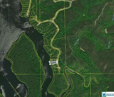 LOT-36 WATERS WAY # LOT-36 - LAKE LOT, CLANTON, AL 35046 - Photo 2
