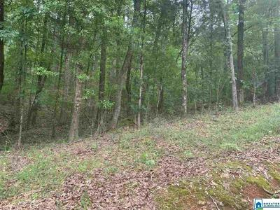 530 BLACK ACRES RD 28, Cropwell, AL 35054 - Photo 2