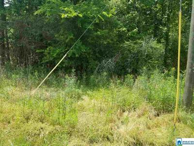 0000 N JIM BAGWELL RD # TBD, EMPIRE, AL 35063 - Photo 2