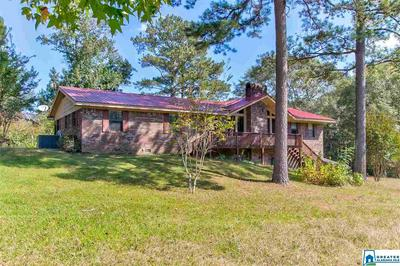 55 MYERS RD, NAUVOO, AL 35578 - Photo 2
