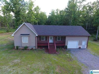 258 PINE MOUNTAIN RD, REMLAP, AL 35133 - Photo 1