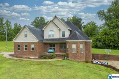 10006 SHIPPTOWN RD, EMPIRE, AL 35063 - Photo 1