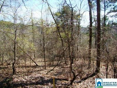 0 MOHAWK BLUFF DR 2, Ohatchee, AL 36271 - Photo 2