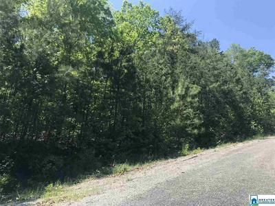 0 SHOAL CREST DR LOT 12 13, Ashville, AL 35953 - Photo 1