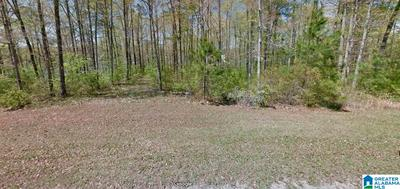 BRUSHY CREEK POINT RD, ARLEY, AL 35541 - Photo 2