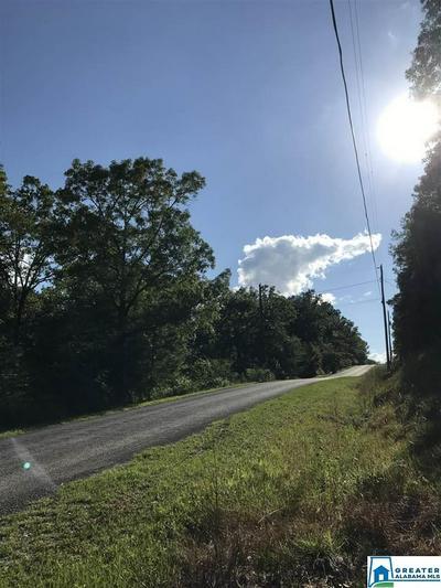 625 COUNTY ROAD 774 # 20L, MONTEVALLO, AL 35115 - Photo 1