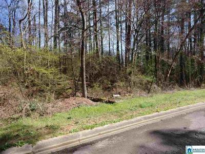 4918 ISSAC LN # 43, Adamsville, AL 35005 - Photo 1