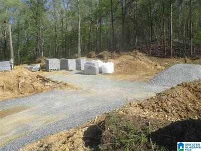 0 LAZY Y RD, HAYDEN, AL 35079 - Photo 1