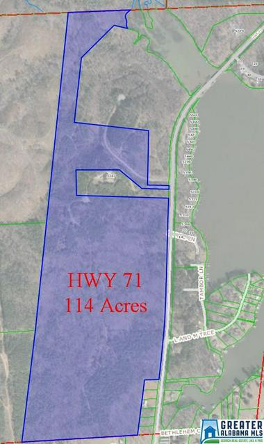 HWY 71 114+/- ACRES, SHELBY, AL 35143 - Photo 2