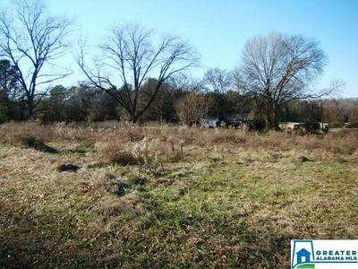 6185 US HIGHWAY 431, ALEXANDRIA, AL 36250 - Photo 1