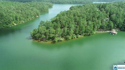 INDIAN CREEK, WEDOWEE, AL 36278 - Photo 2