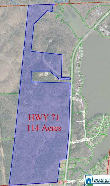 HWY 71 114+/- ACRES, SHELBY, AL 35143 - Photo 1