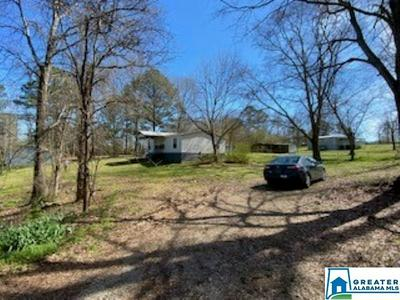 5927 MUD CREEK RD, ADGER, AL 35006 - Photo 2