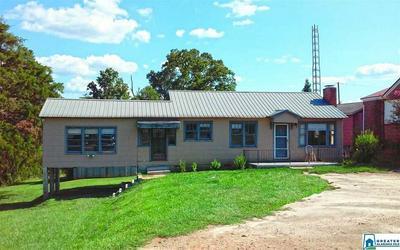 982 ROCK MILLS RD, Roanoke, AL 36274 - Photo 2
