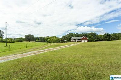 1785 MOUNT VIEW RD, HAYDEN, AL 35079 - Photo 2