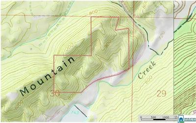 SUMATANGA RD 92+/- AC - NORTH PORTION OF SUMATANGA, Gallant, AL 35972 - Photo 2