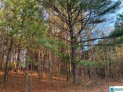 0 MEADOWRIDGE DR 0, Piedmont, AL 36272 - Photo 2