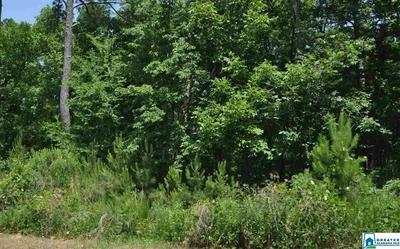 COUNTRY HILLS RD, MONTEVALLO, AL 35115 - Photo 1