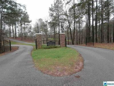 CO RD 1068 27, Verbena, AL 36091 - Photo 1