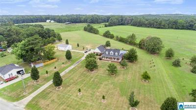 3880 COUNTY ROAD 232, THORSBY, AL 35171 - Photo 2