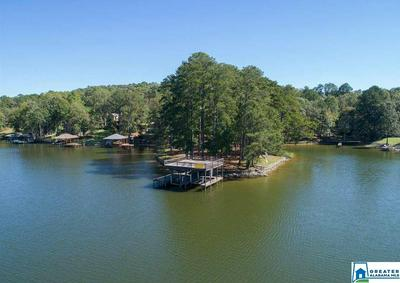 75 DAVIS ACRES RD 29, Alpine, AL 35014 - Photo 2