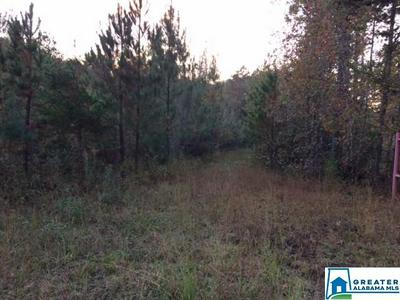 8648 GROUNDHOG RD # 0, ADGER, AL 35006 - Photo 2