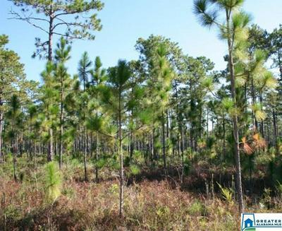 PLANT RD 1, Billingsley, AL 36006 - Photo 1