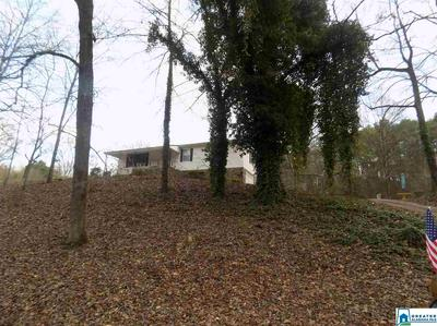 4027 BROOKSIDE CARDIFF RD, GRAYSVILLE, AL 35073 - Photo 1