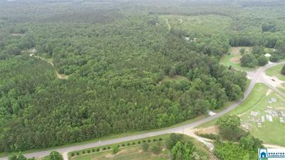30.5 ACRES CO RD 33 # 0, WADLEY, AL 36276 - Photo 2