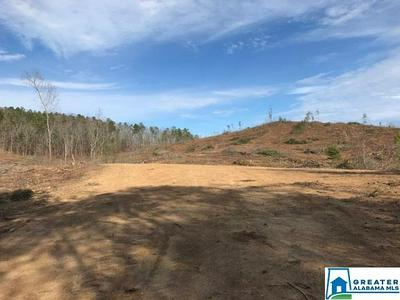 HWY 278 30 ACRES, Piedmont, AL 36272 - Photo 1