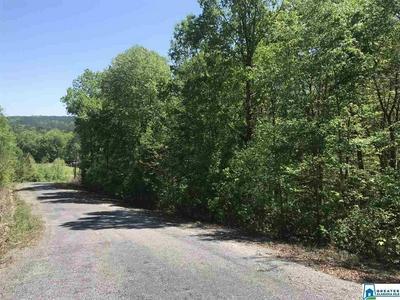0000 SHOAL CREST DR 8, Ashville, AL 35953 - Photo 2