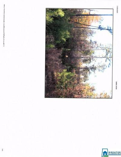 3014 COUNTY ROAD 520 # 1, VERBENA, AL 36091 - Photo 1