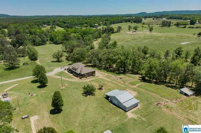 3684 PINE MOUNTAIN RD, REMLAP, AL 35133 - Photo 2