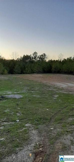 1810 BONE DRY RD 4, Kimberly, AL 35091 - Photo 2