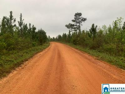 528 CO RD 38, Verbena, AL 36091 - Photo 2