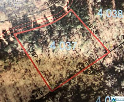 LOT 72 SOUTH FORK RD # LOT 72, QUINTON, AL 35130 - Photo 2
