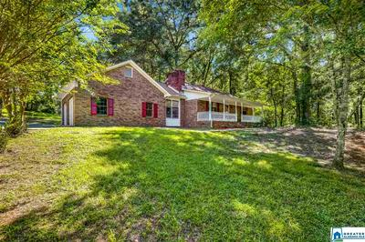 225 CO RD 33, ONEONTA, AL 35121 - Photo 2