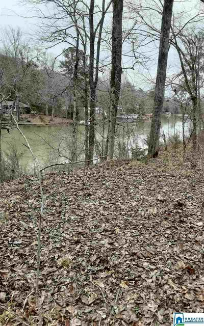 00 RICHARDSON SUBDIVISION RD # RICHARDSON SUBDIVISION RD LOT 1, PARRISH, AL 35580 - Photo 1