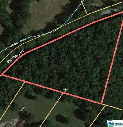 1932 RED VALLEY RD # PARCEL 2, REMLAP, AL 35133 - Photo 2